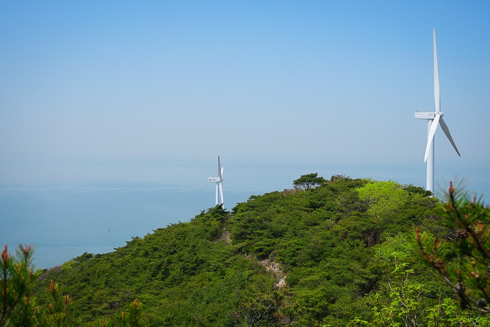 Ikeuchi's operations are entirely driven by wind powered energy